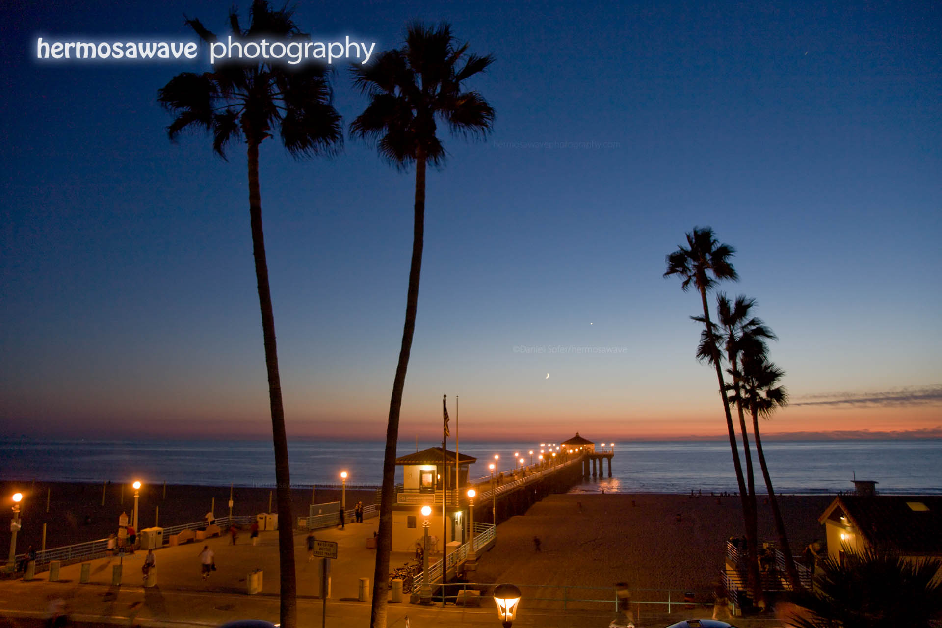 Two Palms and a Pier