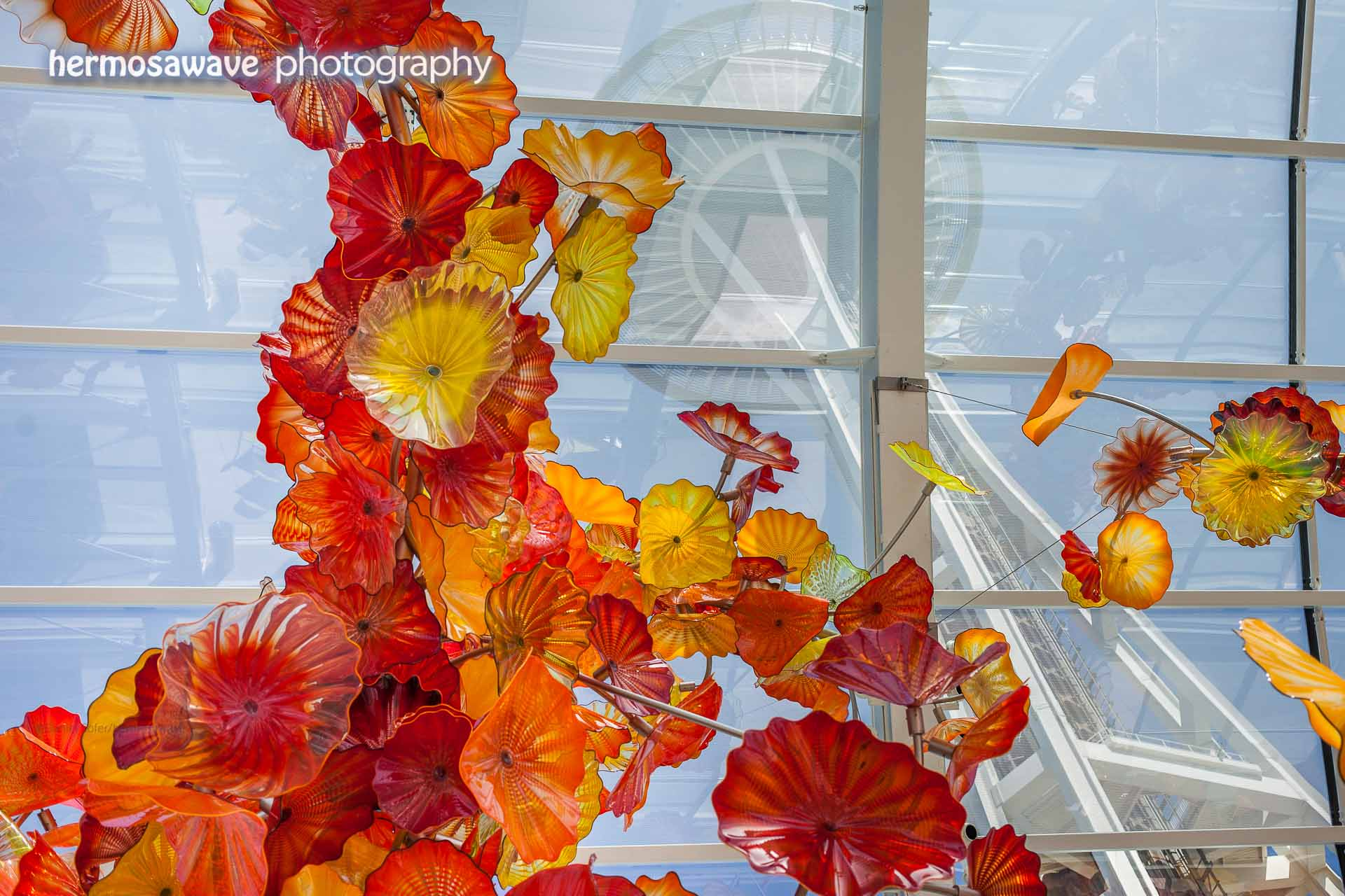 Space Needle Through Chihuly Garden
