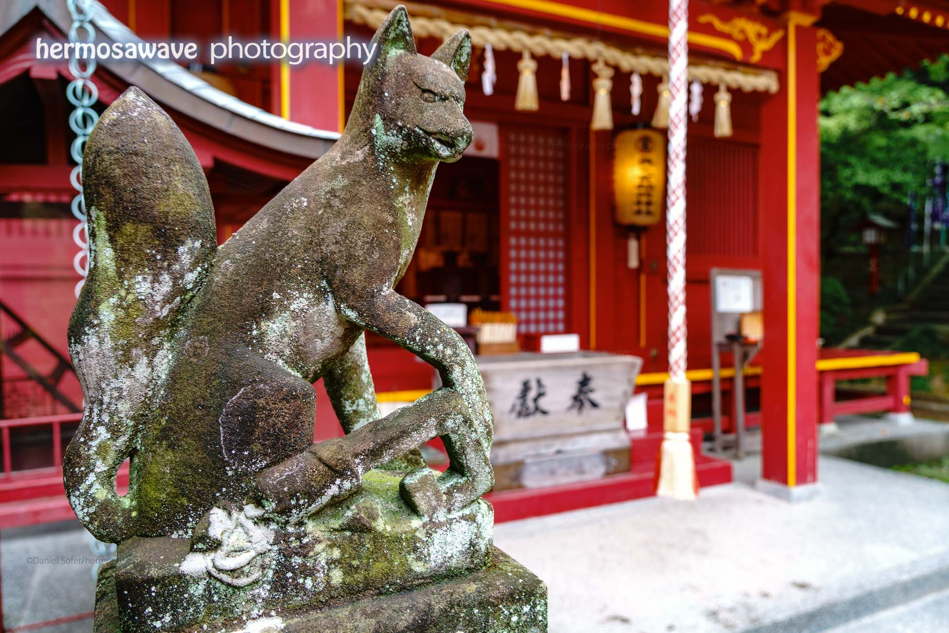 Fox Guarding Shrine at Miyajidake Shrine