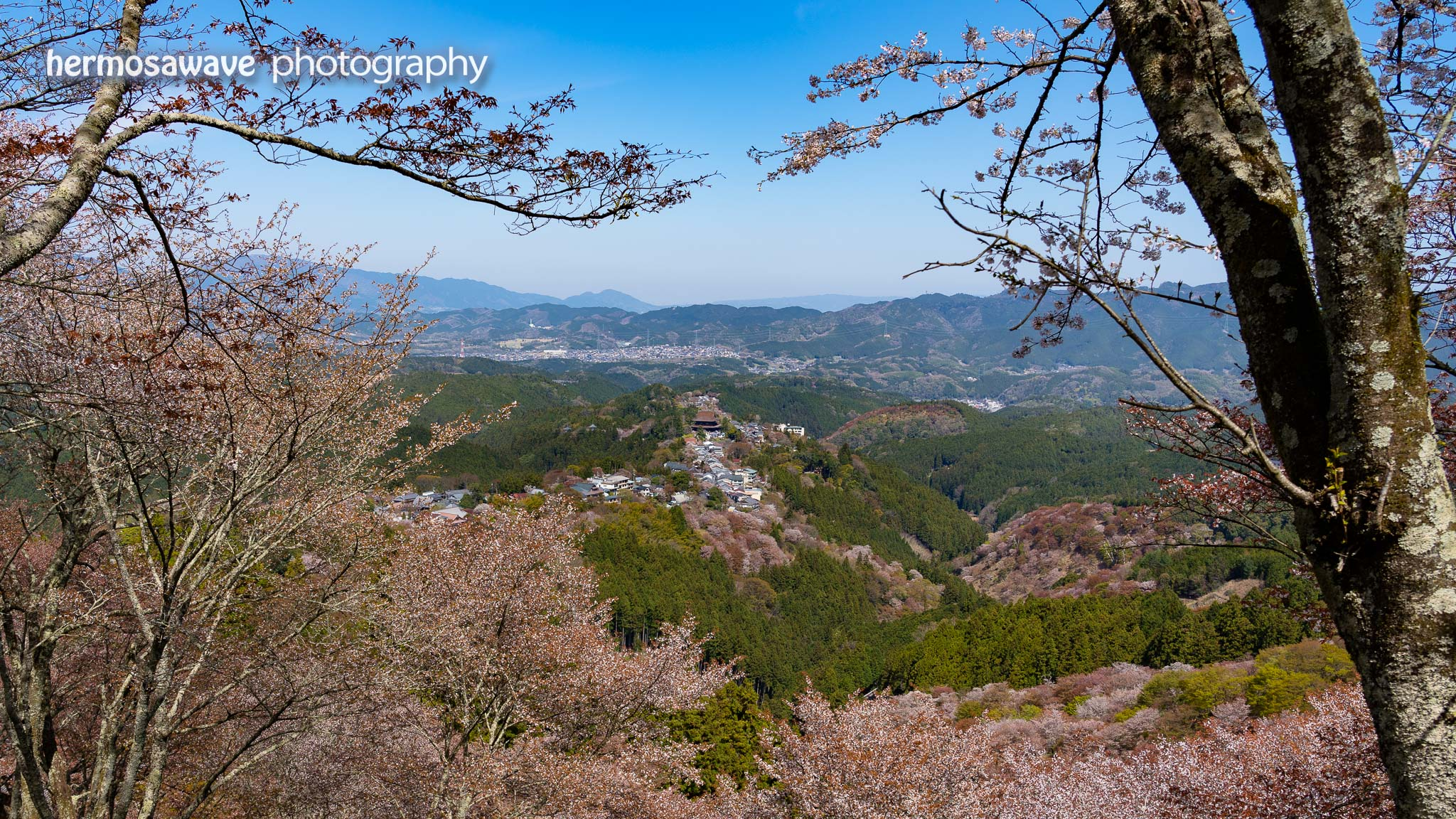 Yoshino View
