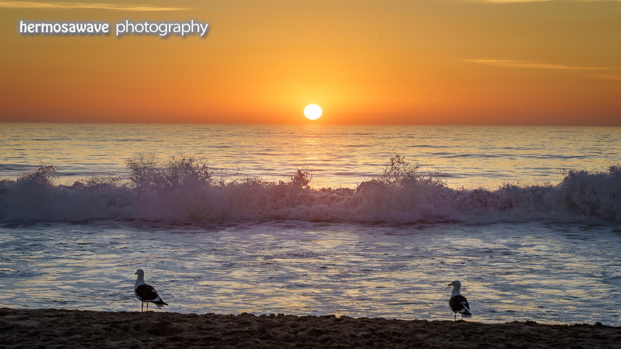 Sunset with 2 Gulls
