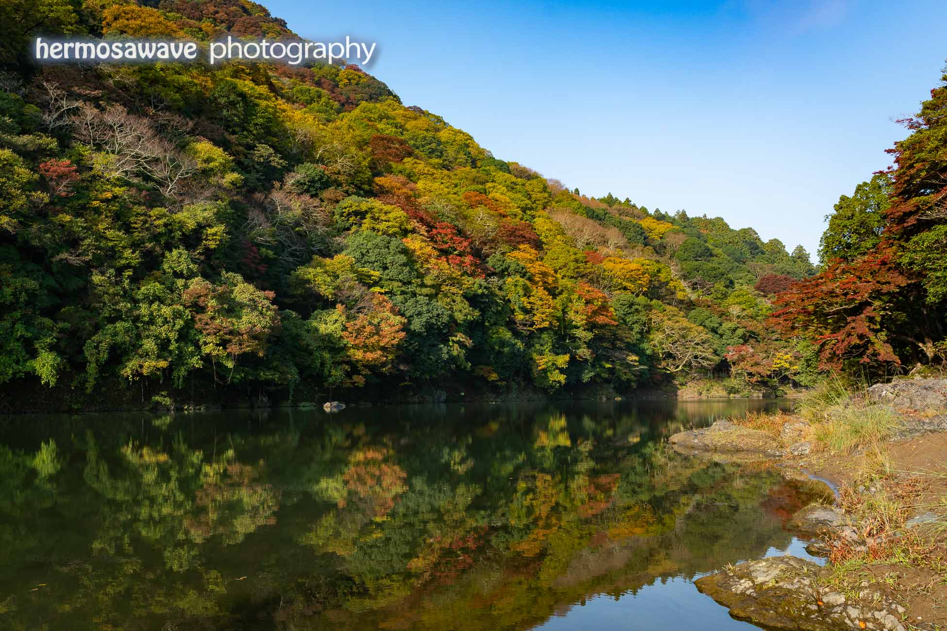Colors on the Oi River・大堰川の紅葉